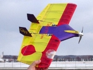 Radical RC Quick Wing 20mm CYBER MONDAY SPECIAL REG $45 - Product Image